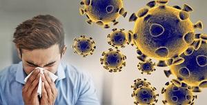 large corona viruss 61290